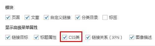 WordPress导航菜单选项,勾选CSS类