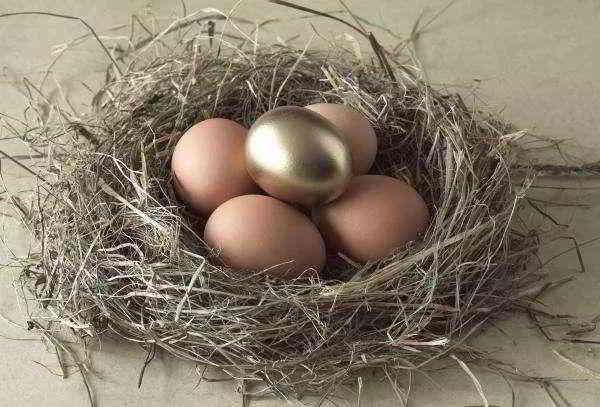 借鸡下蛋,生金蛋