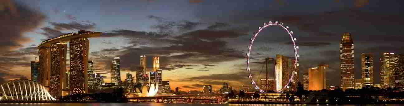 新加坡是土地稀缺,人力资源稀缺,劳动力成本高,生育率低的地方