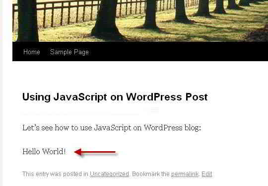 在WordPress文章中,执行JavaScript的结果