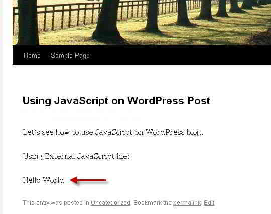 WordPress文章中添加JavaScript代码所显示的结果
