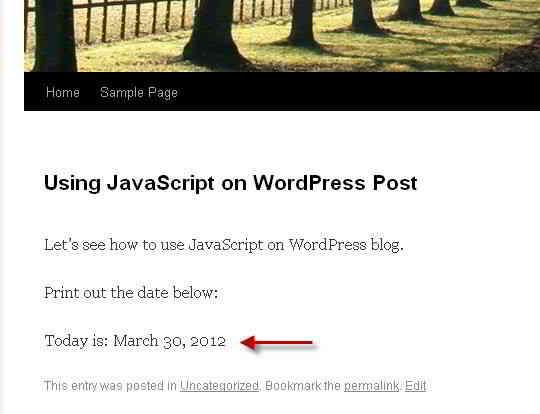 WordPress文章中JavaScript执行今天的日期的结果