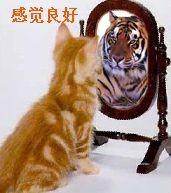 比喻就像镜子,可以看清样子