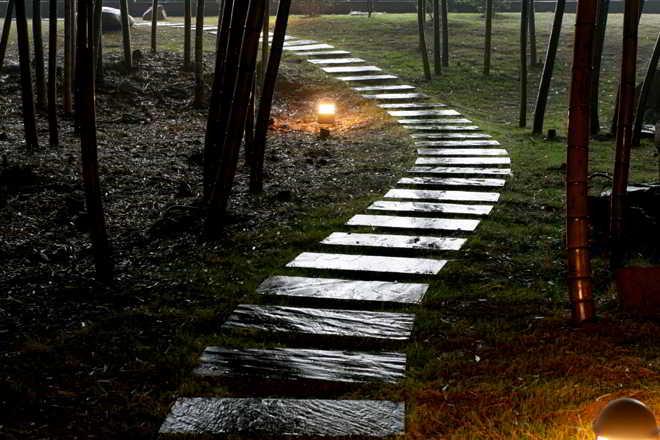 晚上雨后庭院