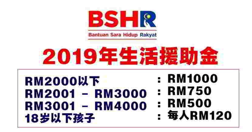 BSHR 2019年生活援助金