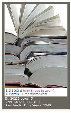 BIG BOOKS 大书本