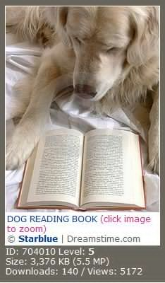 Dog reading a book 狗在看书
