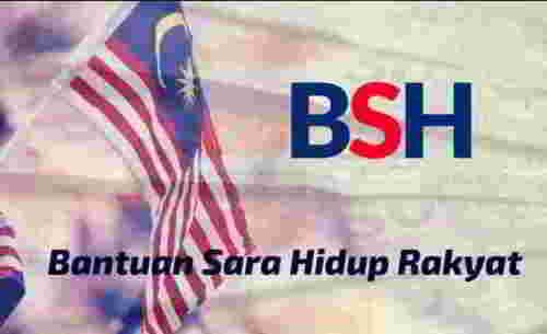 生活援助金(BSH)如何更新?2019年申请BSHR表格条件