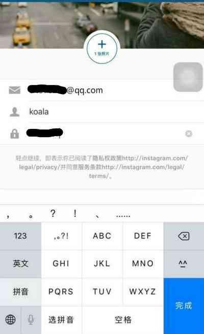 输入注册Instagram账号信息