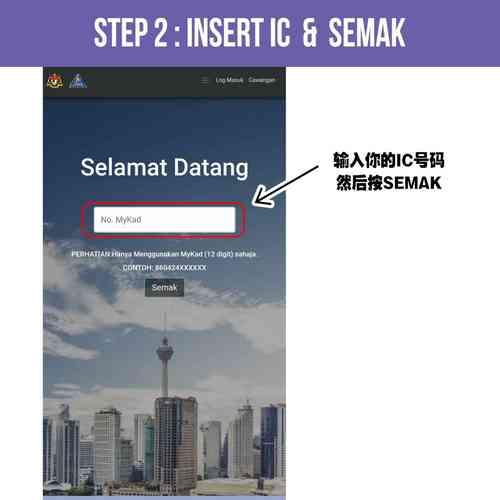 第 2 步:输入IC并单击SEMAK