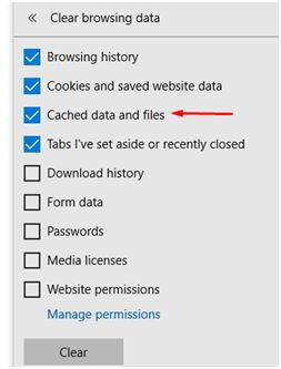 """如何清除Internet Explorer中的DNS缓存?从菜单中选择""""缓存的数据和文件""""选项"""