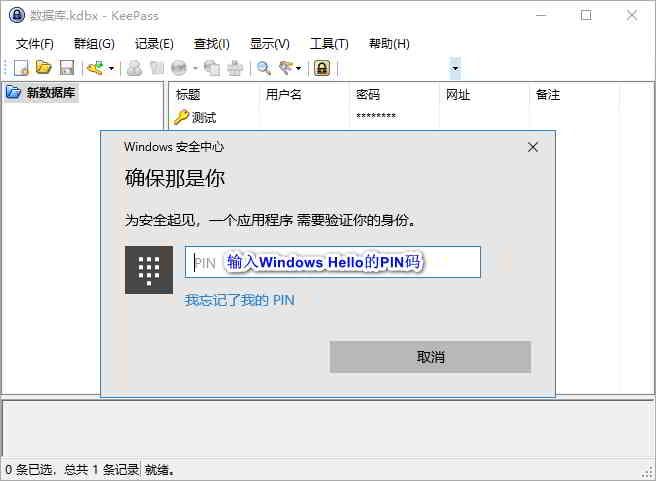 为了确认是你本人,在设置WinHelloUnlock插件时,需要输入Windows Hello的PIN码。